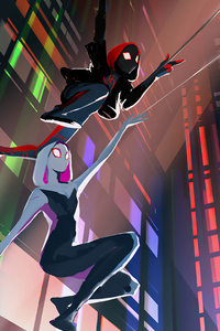 Spider Man And Spider Gwen