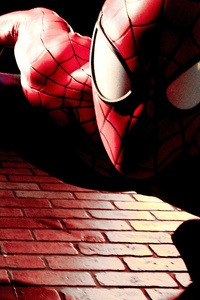 Spider Man Cosplay 5k