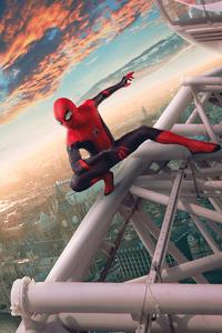 240x320 Spider Man Cosplay 8k