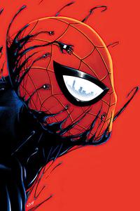 Spider Man In Venom Artwork