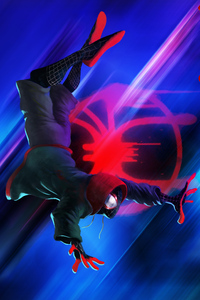 Spider Man Into The Spider Verse Illustration