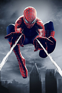 Spider Man Spiderweb