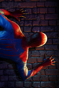 1125x2436 Spider Man The Web Of Destiny