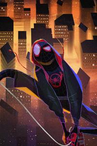 Spider Man Universe Illustration
