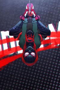 1080x2160 Spider Man Up Side Down