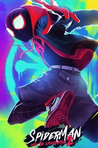 Spider Man Verse 2020