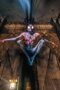 Spider Miles Morales Cosplay