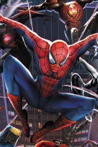 540x960 Spider Team