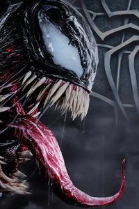 Spiderman And Venom 4k