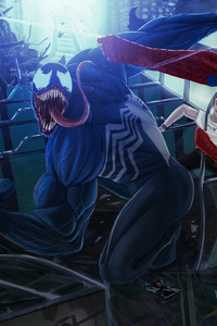 Spiderman And Venom Fighting