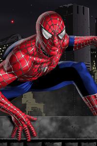 Spiderman Arts