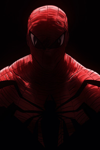 Spiderman Arts New