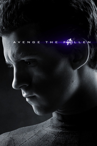Spiderman Avengers Endgame 2019 Poster