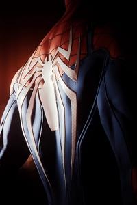 Spiderman Back Spider Logo 4k