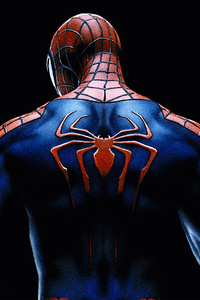 Spiderman Back Spider Logo