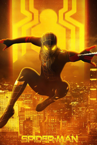 1125x2436 Spiderman Black And Gold Suit Look 5k