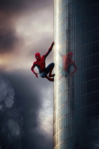 1440x2560 Spiderman Climbing Wall