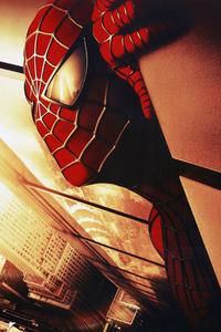Spiderman Closeup Arts
