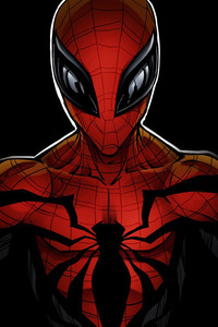 Spiderman Comicbook