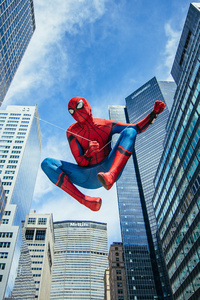 Spiderman Cosplay 5k