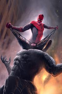Spiderman Defeating Venom