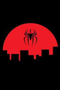 Spiderman Digital Illustrator