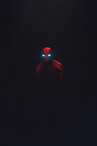 Spiderman Fan Made Artwork