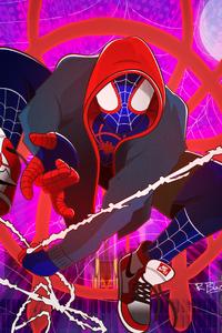 Spiderman Graphic Design Artwork