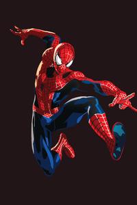 Spiderman Graphic Design