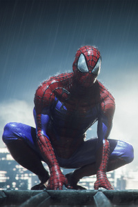 Spiderman In Rain