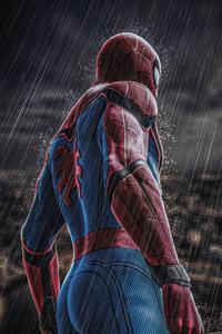 Spiderman In Rain 4k