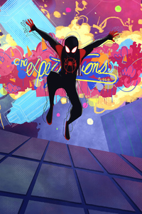 Spiderman Into Spiderverse