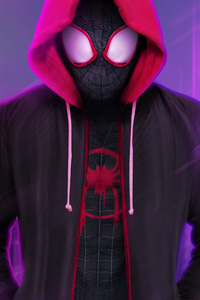 SpiderMan Into The Spider Verse 2018 Digital Artwork