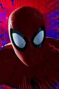 SpiderMan Into The Spider Verse 2018 Movie 4k