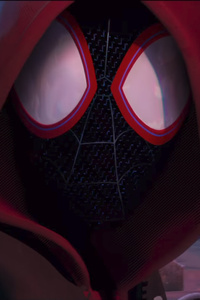 640x960 SpiderMan Into The Spider Verse Movie 2018