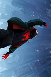 1080x2280 SpiderMan Into The Spider Verse Movie 8k