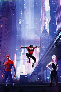 240x320 Spiderman Into The Spiderverse 15k