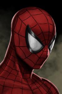 Spiderman Mask Artwork