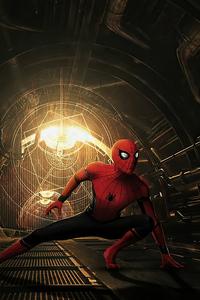 1440x2960 Spiderman Mcu