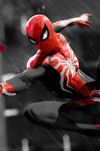 Spiderman Monochrome