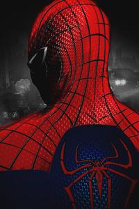 Spiderman New Digital Art