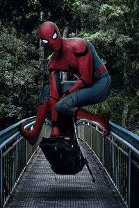 Spiderman On The Bridge