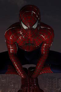 Spiderman On Top