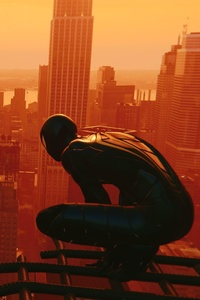 Spiderman Over The City