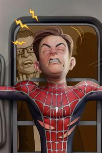 Spiderman Stoping Train
