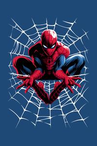 360x640 Spiderman Web Minimal 4k