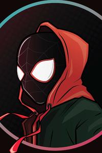 Spiderverse Illistration