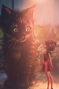 Street Cat 4k
