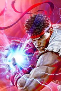 1080x2160 Street Fighter V Champion Edition