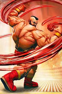 1080x2280 Street Fighter V Video Game